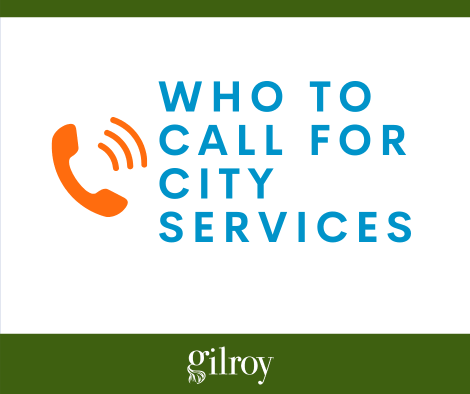 Who to Call for City Services